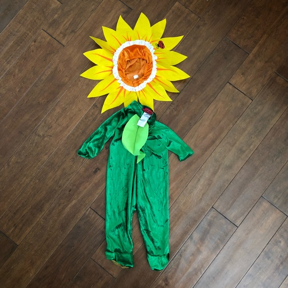 05549dfc09920 Costumes | Sunflower Baby Costume Size Small 612 Months | Poshmark